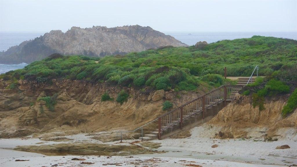17-Mile Drive featuring a sandy beach