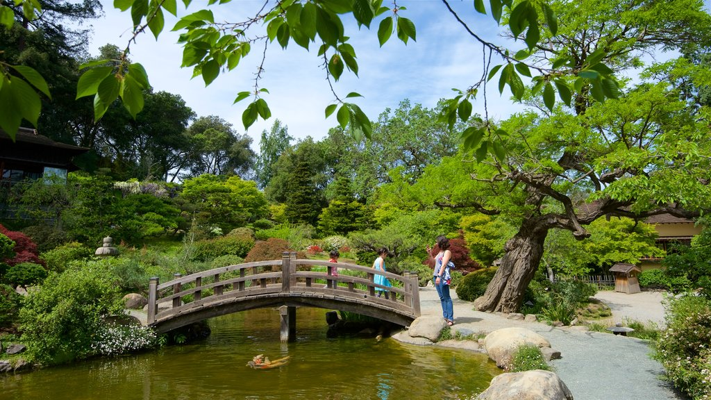 Hakone Gardens featuring a park