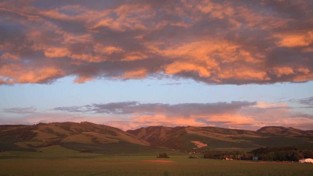 Walla Walla which includes a sunset