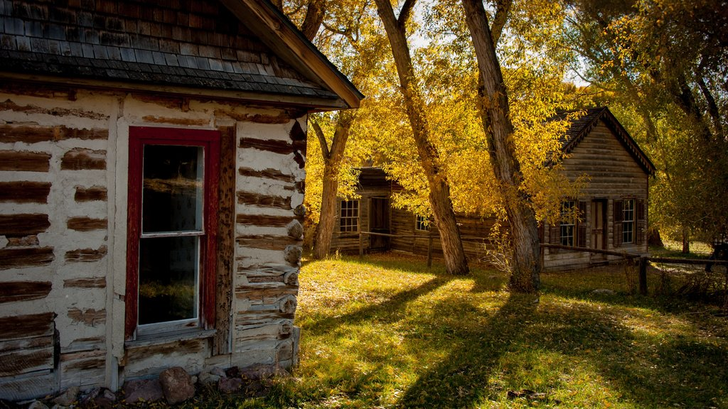 Dillon which includes fall colors, a house and tranquil scenes