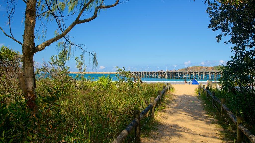 Jetty Beach which includes general coastal views and a beach