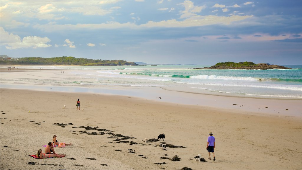 Coffs Harbour which includes a sandy beach as well as a small group of people