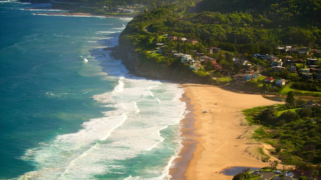 Wollongong which includes a coastal town and a sandy beach
