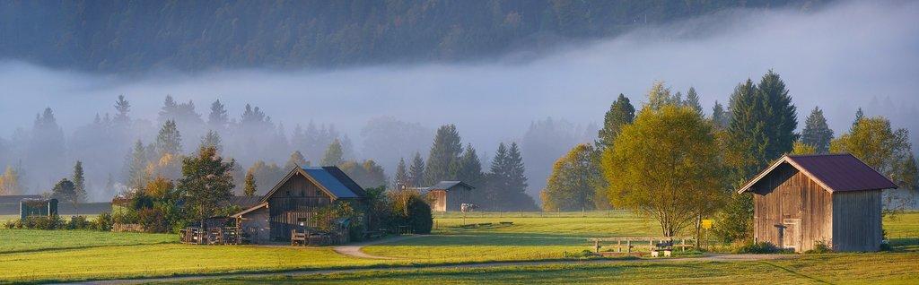 bavaria_landscape.jpg?1585673889