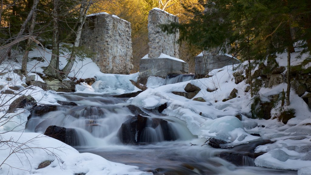 Gatineau Park which includes a waterfall and snow