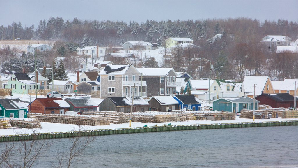 North Rustico showing a small town or village and snow