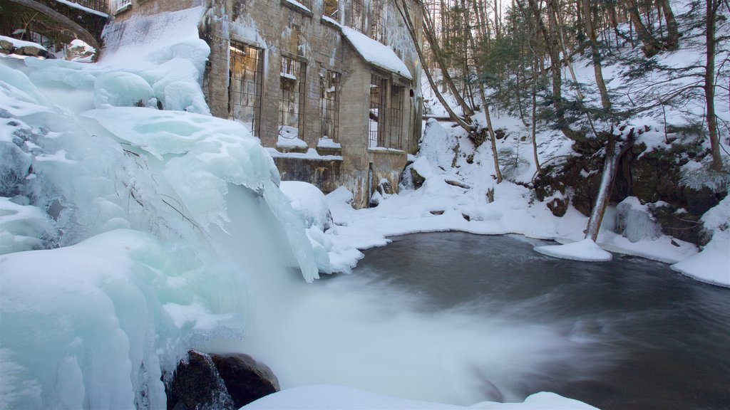 Gatineau Park which includes snow and heritage elements