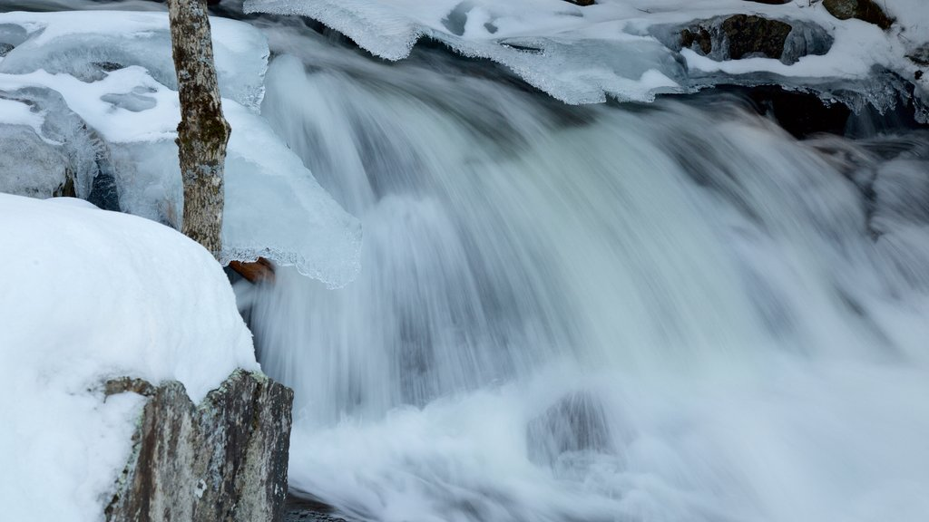 Gatineau Park featuring snow and a waterfall