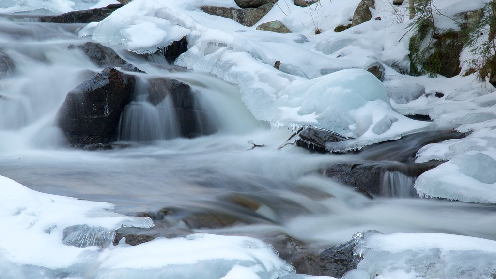 Gatineau Park featuring a cascade and snow