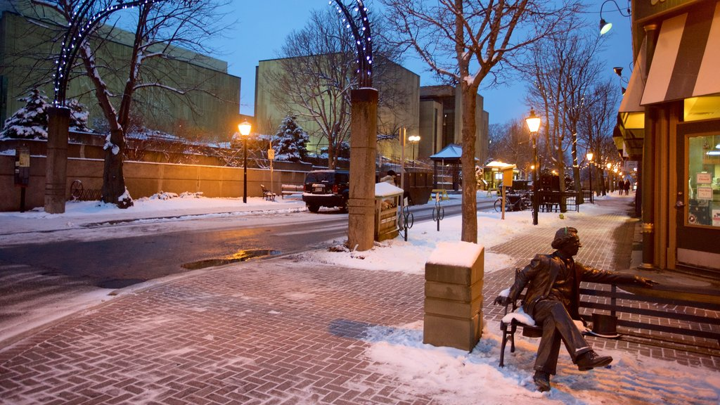 Victoria Row showing night scenes, a statue or sculpture and snow