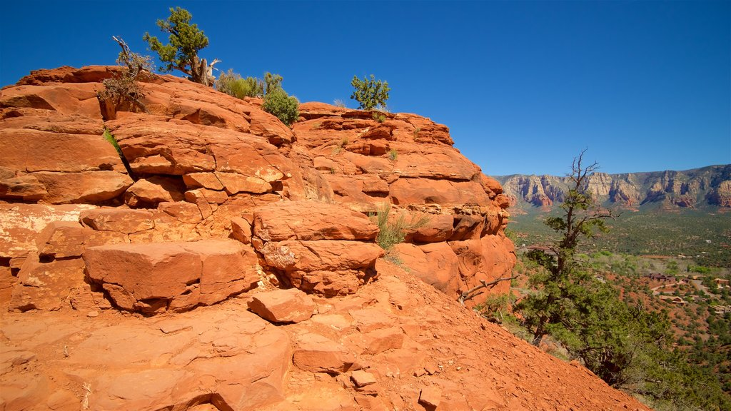 Sedona showing a gorge or canyon, desert views and tranquil scenes