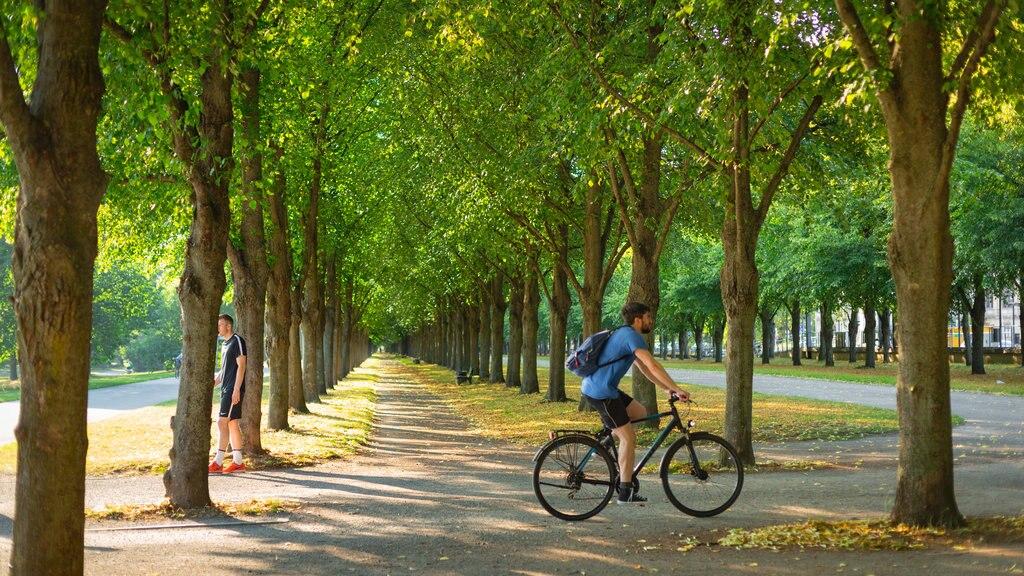 fahrradfahrer-im-gruenen.jpg?1586346656
