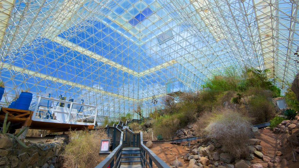 Biosphere 2 featuring interior views