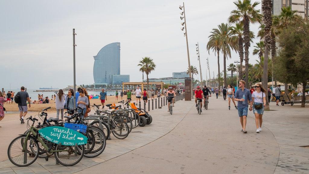biciclette-parcheggiate-lungo-la-passeggiata-della-barceloneta.jpg?1586876331