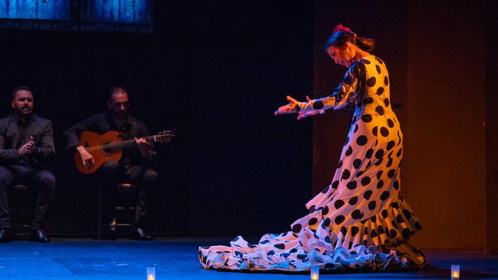 festival-flamenco-madrid.jpg?1586946420