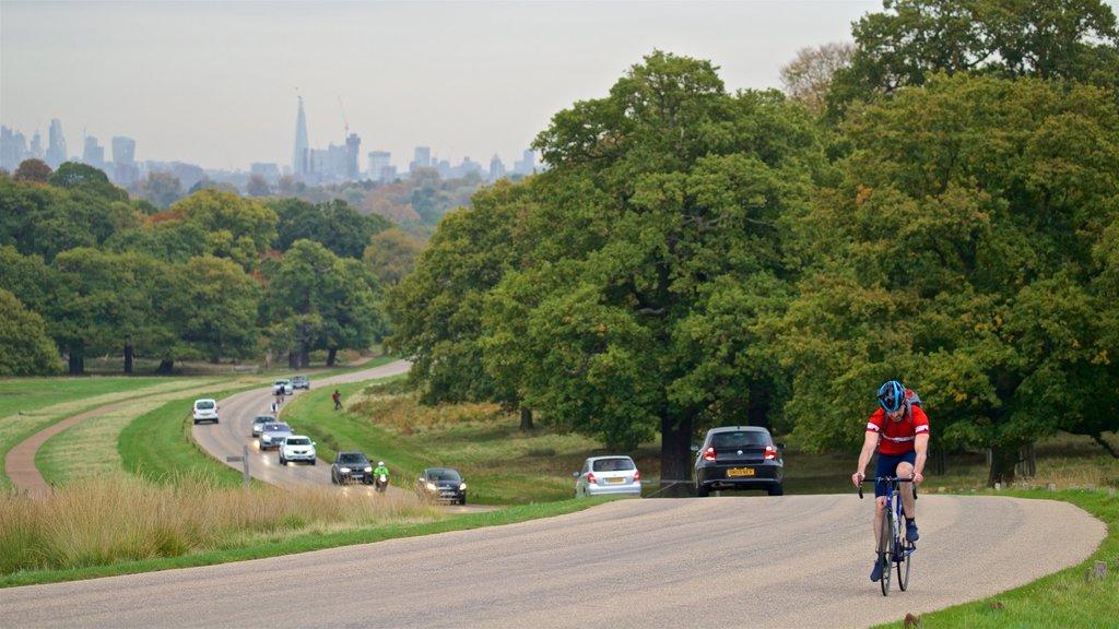ciclista-lungo-una-strada-di-richmond-park-21_Pick.jpg?1586876835