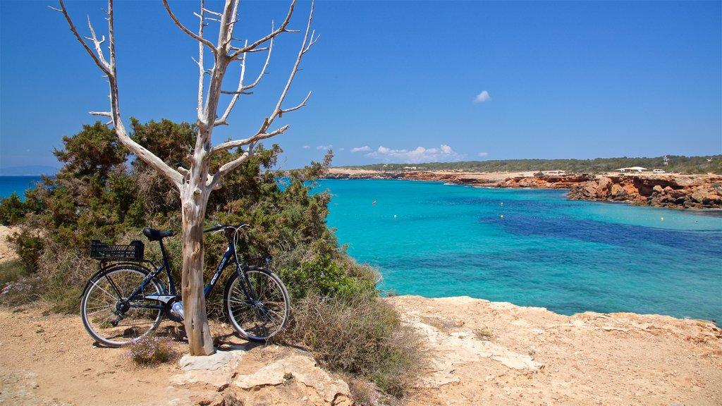 bicicletta-appoggiata-a-un-albero-vicino-a-una-splendida-spiaggia-di-formentera.jpg?1586877789