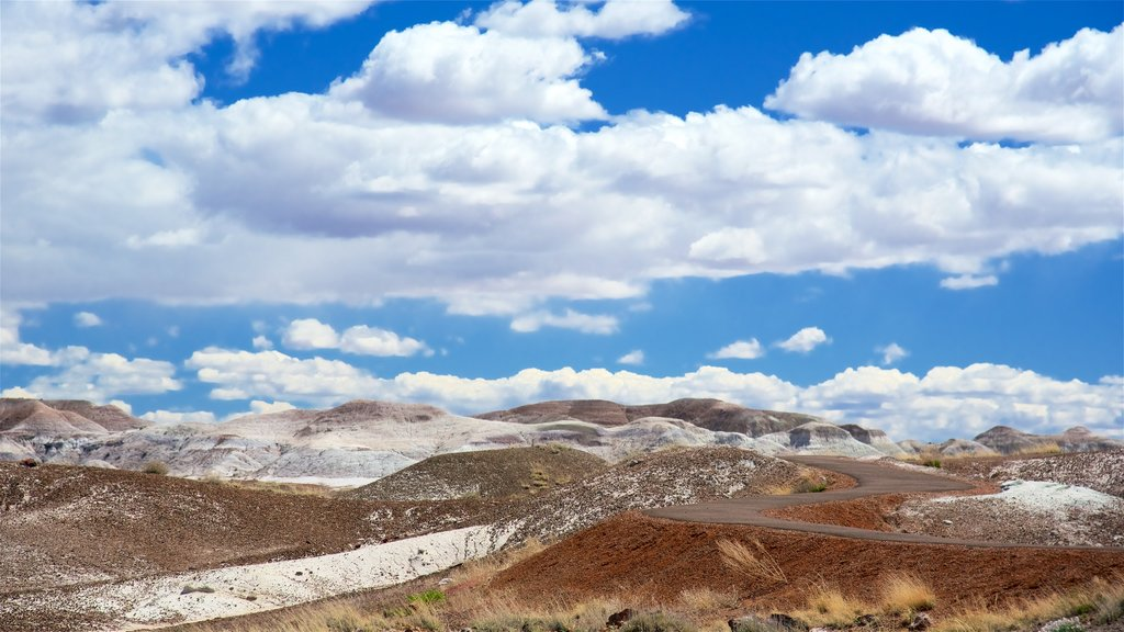 Petrified Forest National Park which includes tranquil scenes and desert views