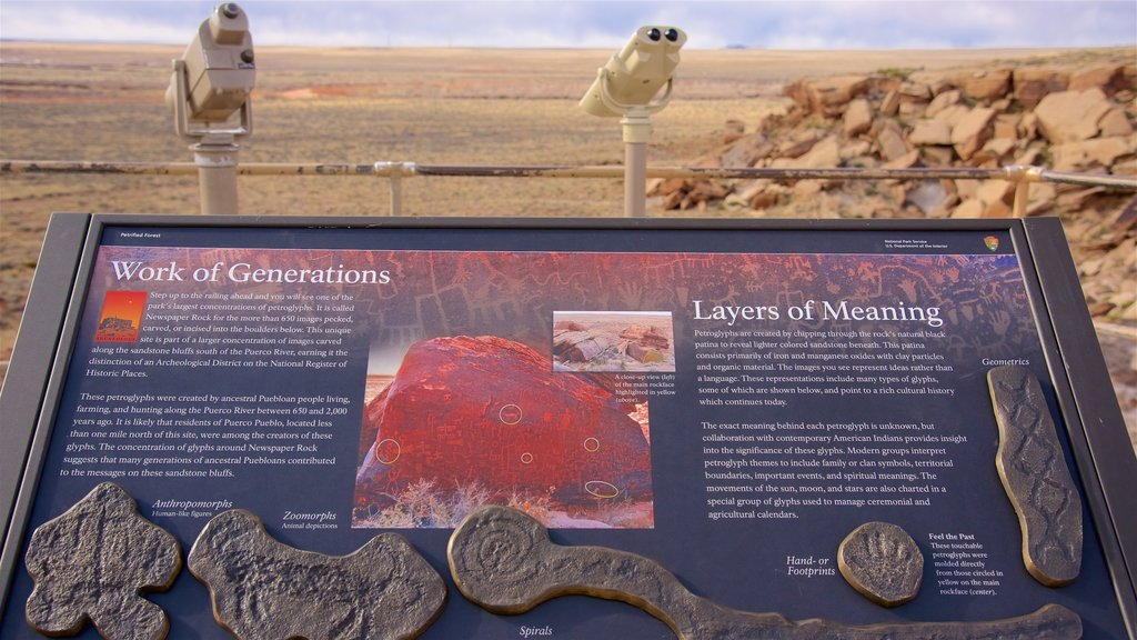Petrified Forest National Park showing views, signage and desert views