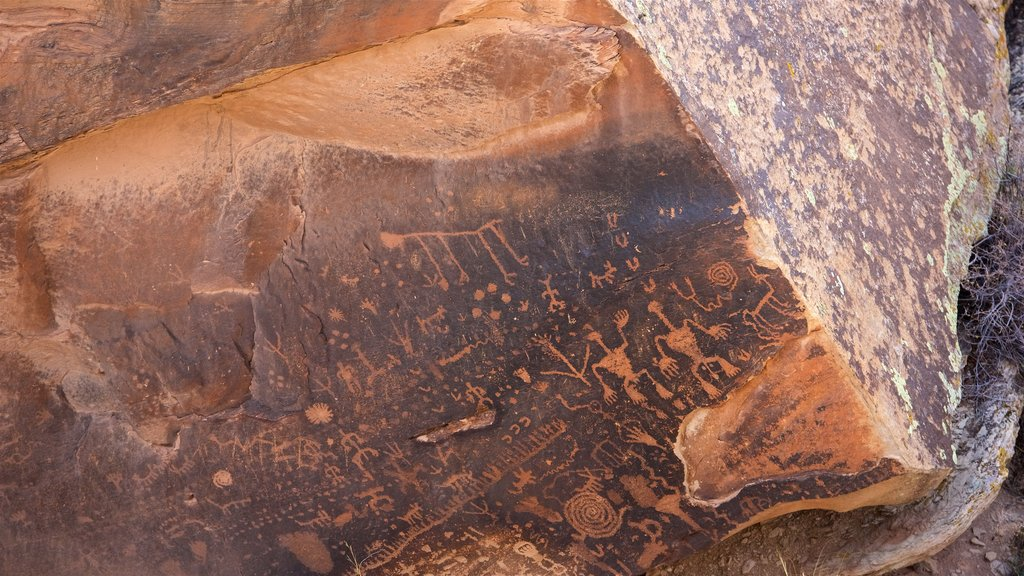 Petrified Forest National Park featuring a gorge or canyon, indigenous culture and desert views