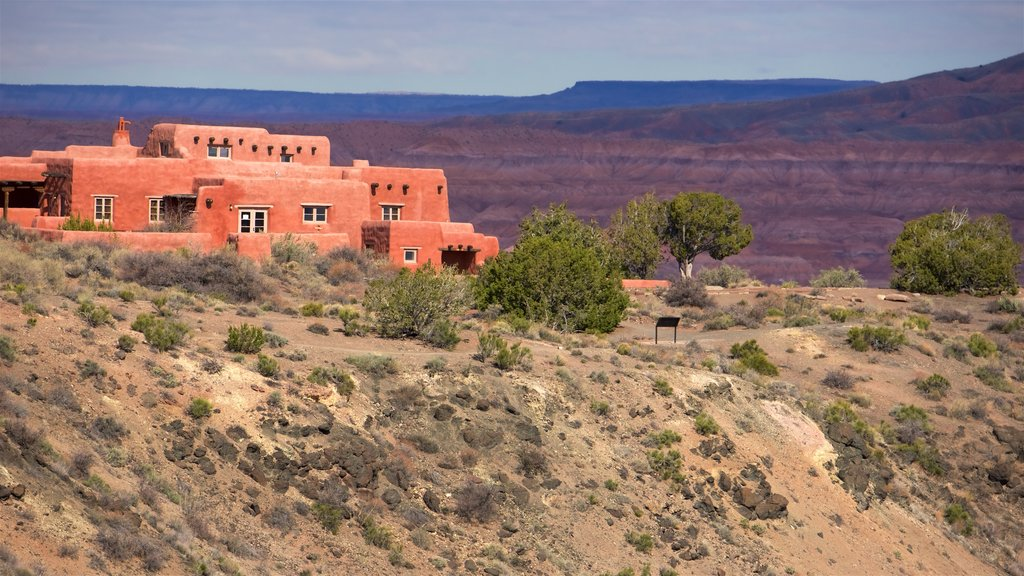 Petrified Forest National Park showing a hotel, desert views and tranquil scenes