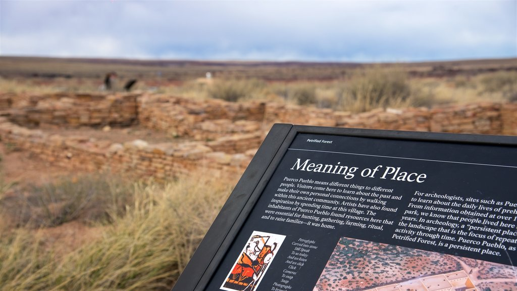 Petrified Forest National Park featuring desert views, building ruins and signage