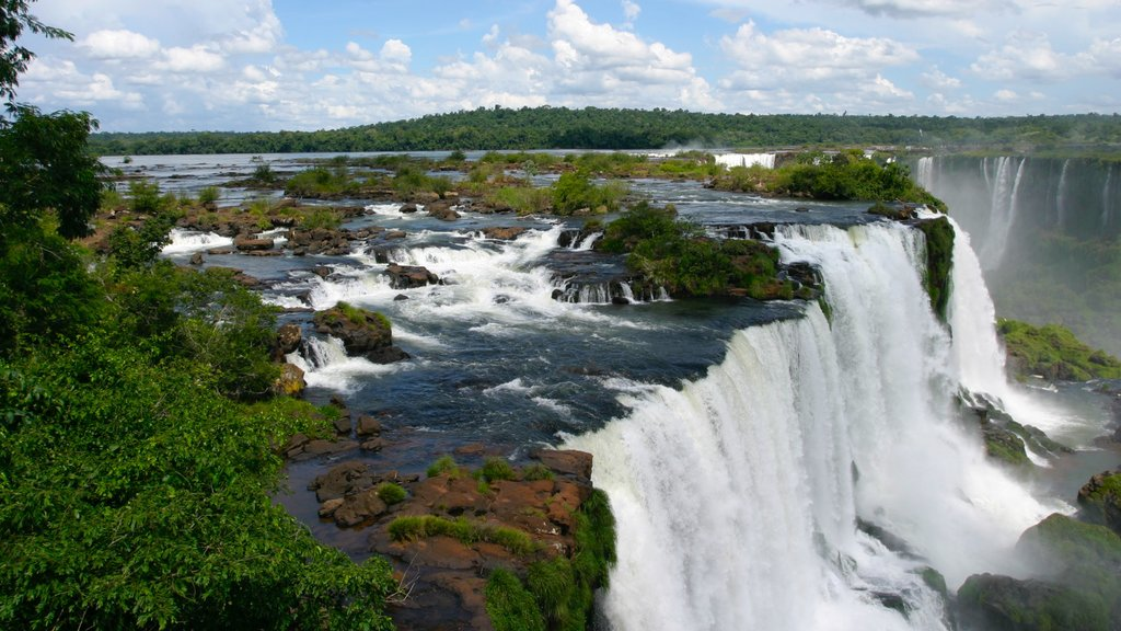 South Region which includes a river or creek, a cascade and rainforest