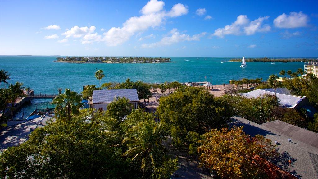 Sul da Flórida mostrando uma baía ou porto e uma cidade litorânea