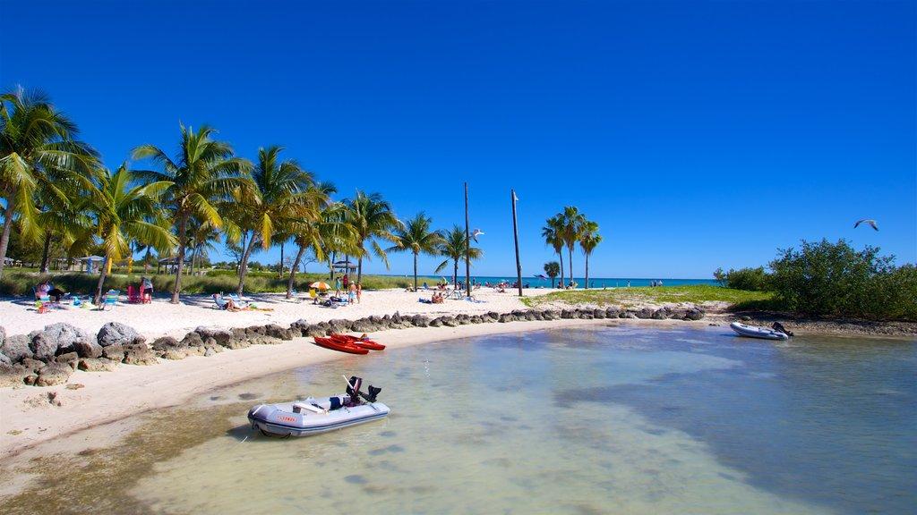 Sul da Flórida caracterizando uma praia de areia, paisagens litorâneas e uma baía ou porto