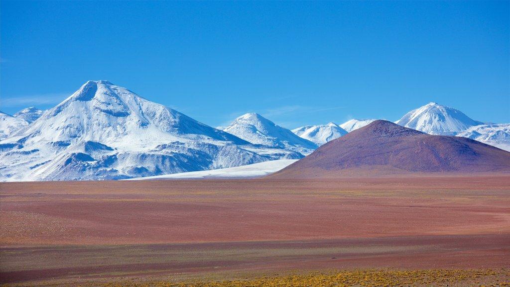 Antofagasta mostrando vistas de paisajes, escenas tranquilas y nieve