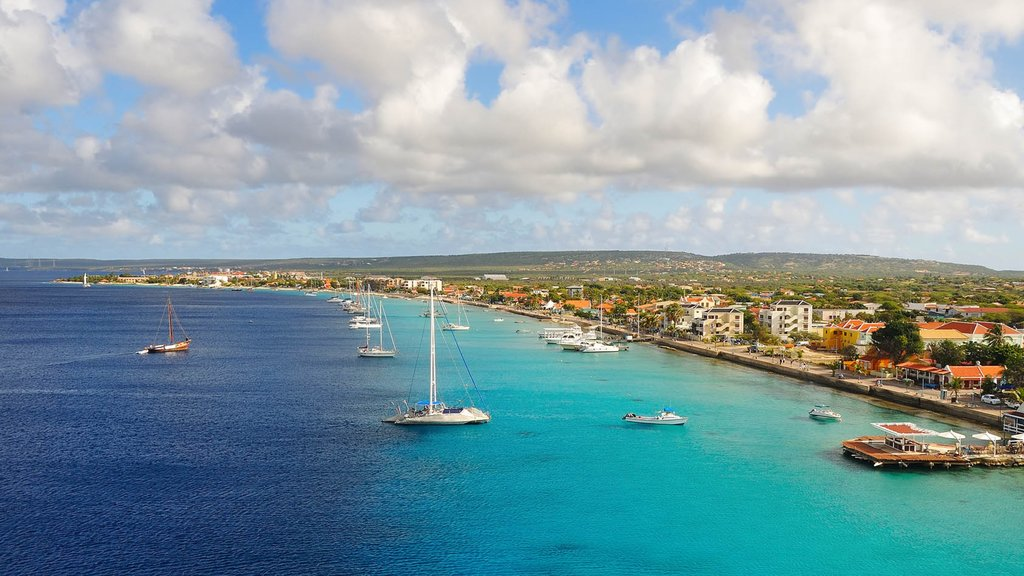 Bonaire ofreciendo una bahía o puerto, vistas generales de la costa y escenas tranquilas