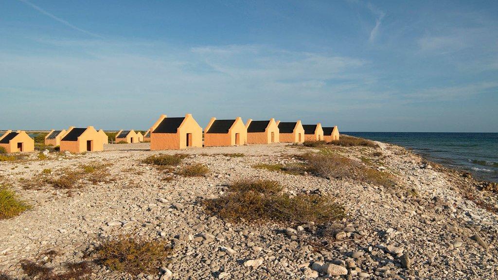 Bonaire que incluye vistas generales de la costa