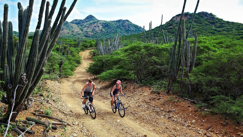 Bonaire que incluye escenas tranquilas y ciclismo de montaña y también una pareja