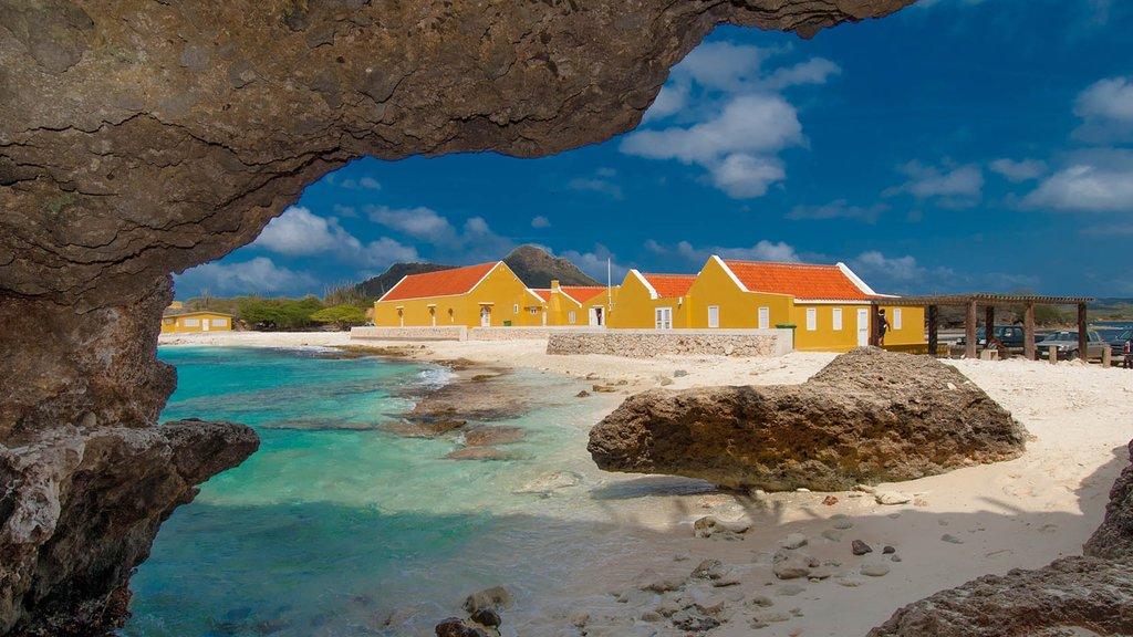 Bonaire mostrando una playa de arena y vistas generales de la costa