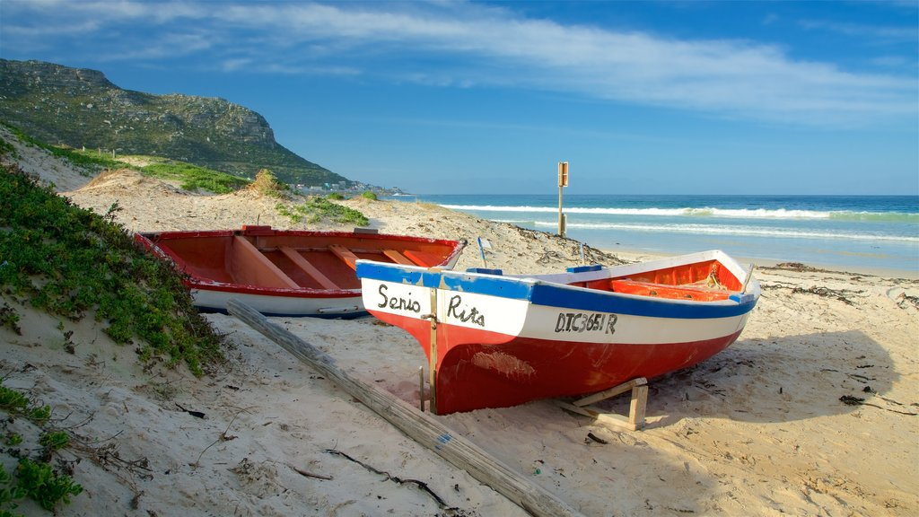 Fish Hoek Beach showing a beach and kayaking or canoeing