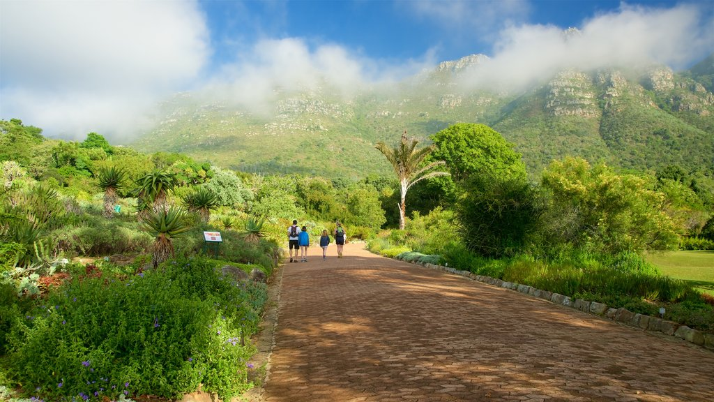 Kirstenbosch National Botanical Gardens which includes a garden as well as a small group of people