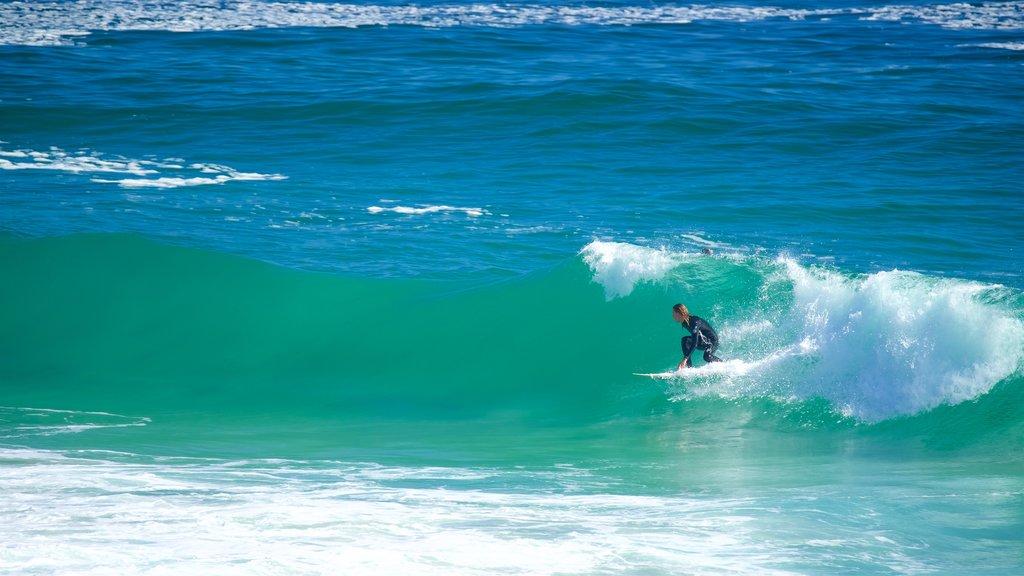Llandudno Beach featuring surfing and waves