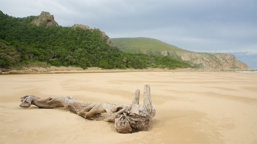 Natures Valley Beach which includes landscape views, general coastal views and a beach