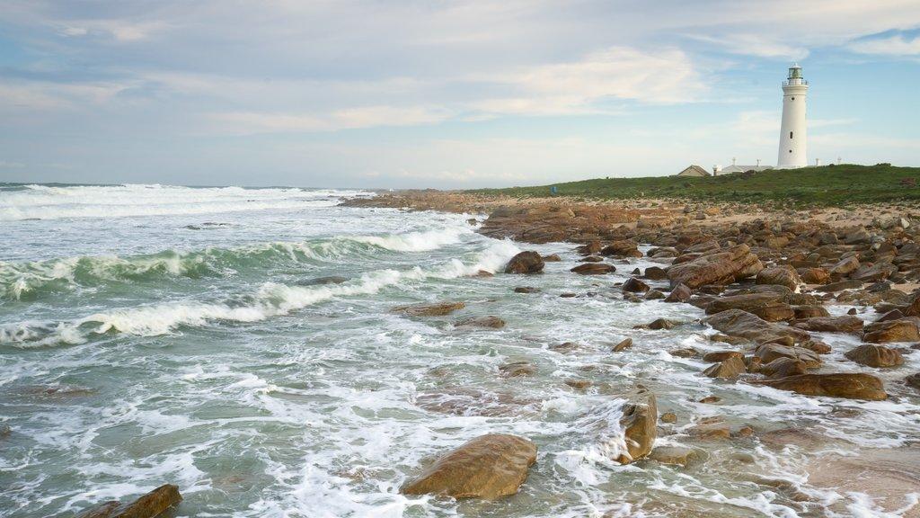 Seal Point Lighthouse que inclui litoral acidentado, um farol e paisagens litorâneas