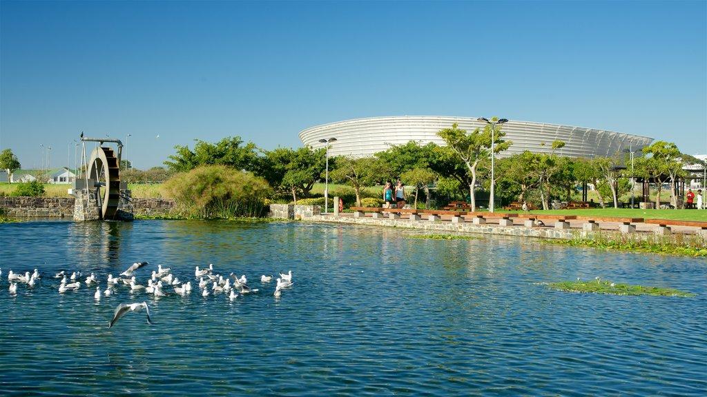 Green Point Park featuring bird life, a garden and a lake or waterhole