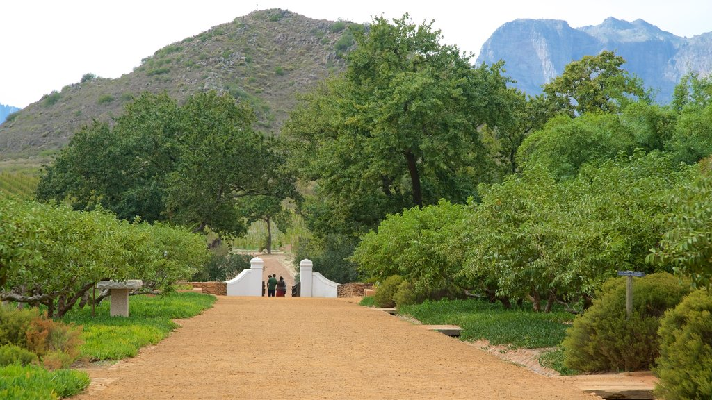 Paarl showing a park