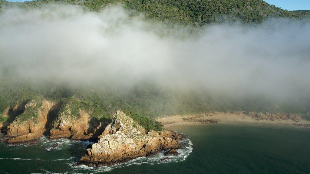 Knysna featuring mist or fog and rugged coastline