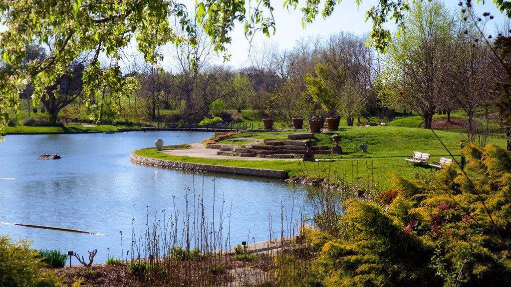 Kansas City showing a pond and a garden