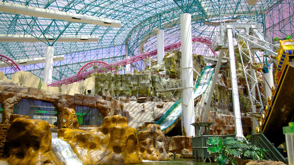Adventuredome Theme Park showing a garden, interior views and rides