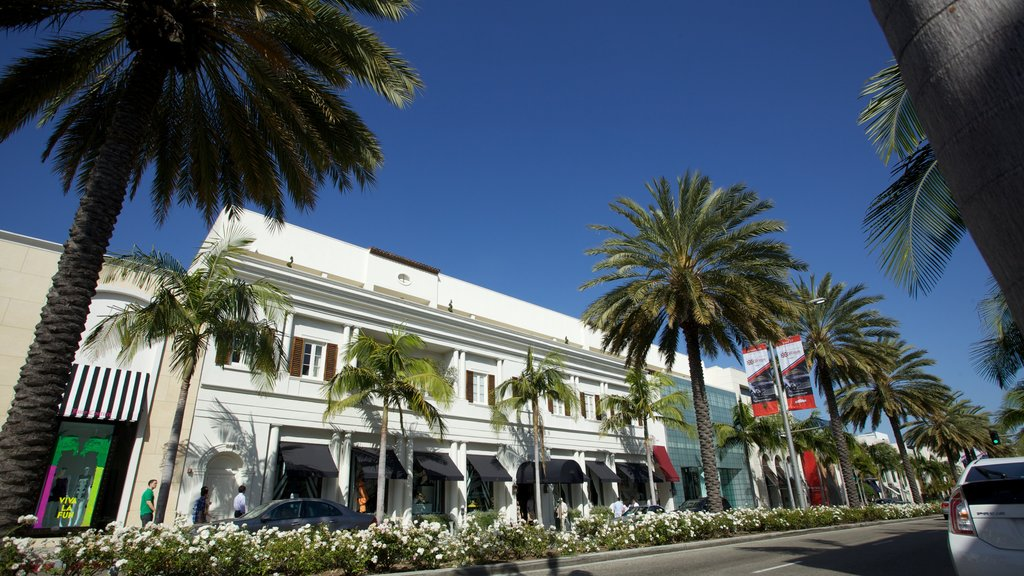 Rodeo Drive which includes a city, street scenes and tropical scenes