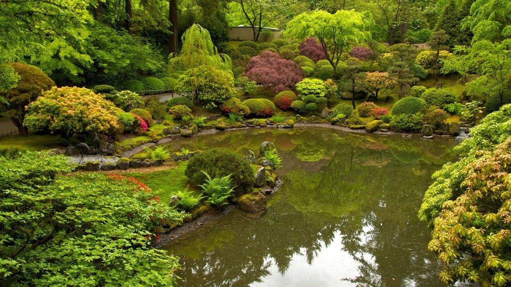 Jardín Japonés de Portland mostrando un parque, vistas de paisajes y un estanque