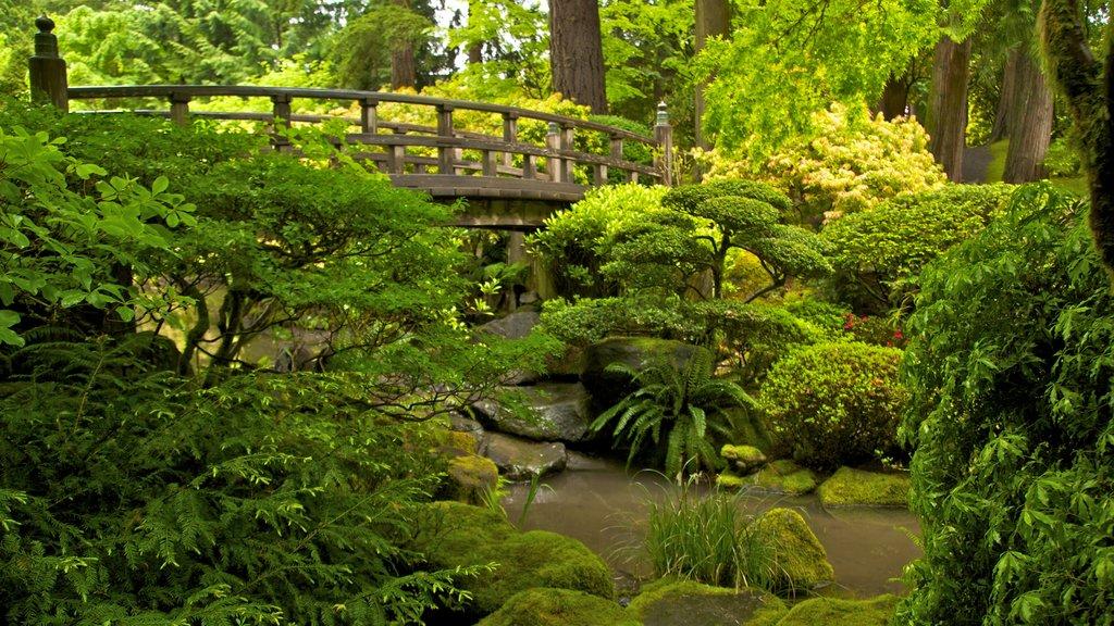 Jardín Japonés de Portland ofreciendo un puente, vistas de paisajes y un parque