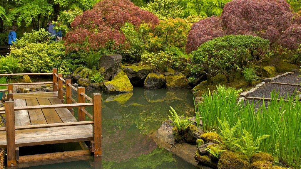 Jardín Japonés de Portland mostrando un estanque, un jardín y vistas de paisajes