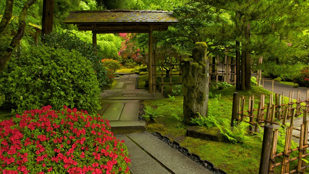 Portland Japanese Garden which includes a garden and flowers