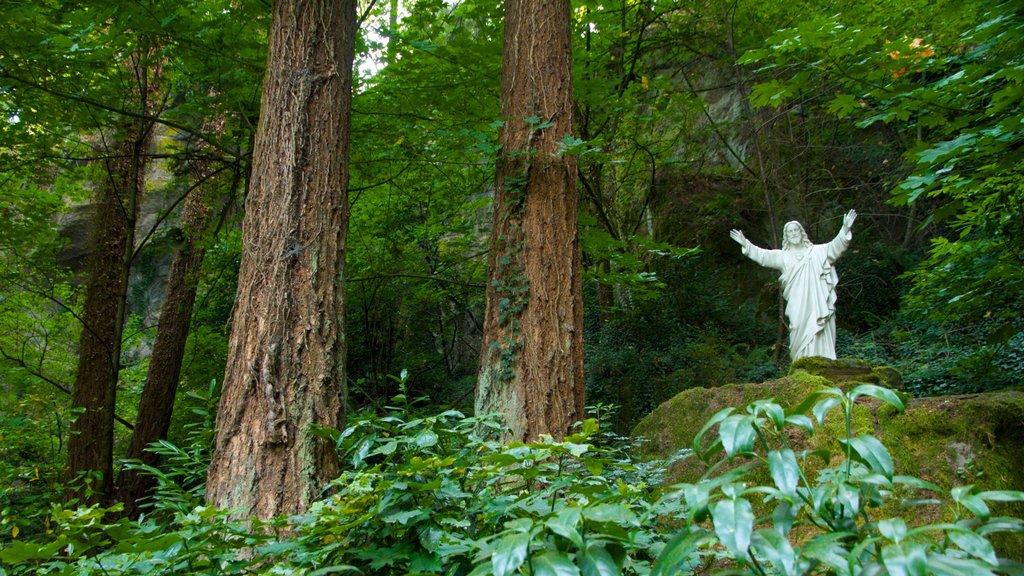 Grotto ofreciendo un jardín, vistas de paisajes y bosques